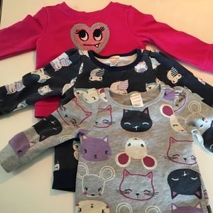 Gymi13-18 month sweatshirts in varying conditions